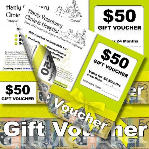 Hanly Veterinary Clinic and Hospital Gift Voucher
