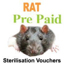 Pre Paid Sterilisation for Rats
