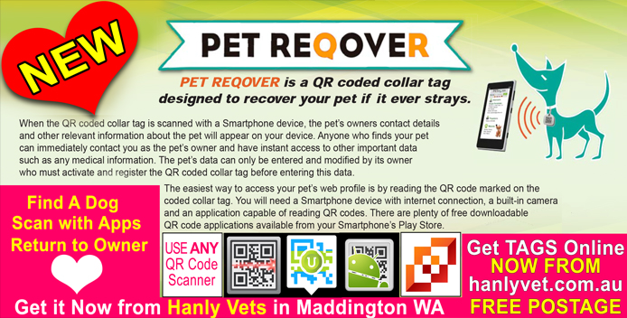 QR coded Pet Tags from Hanly Vet