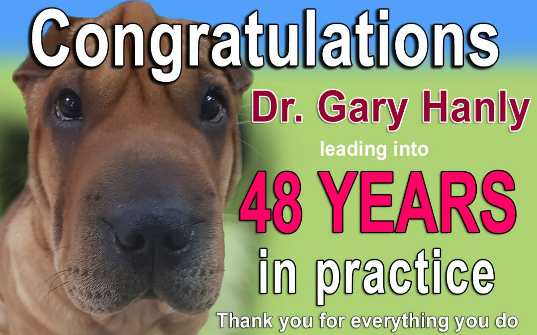 Dr Gary Hanly 48 Years in practice