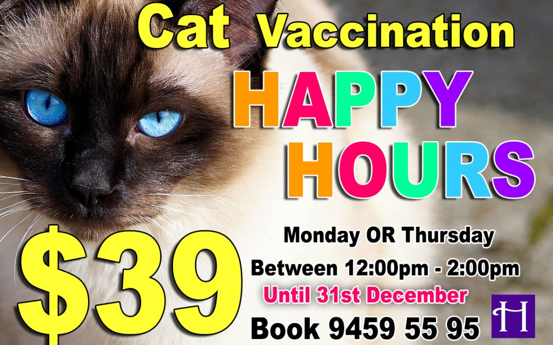 Cat Vaccination Happy Hours $39